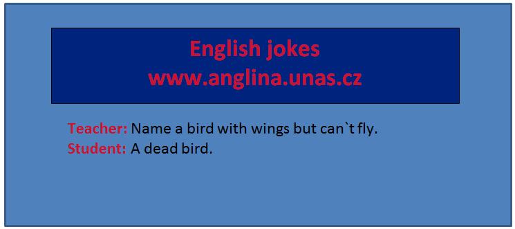 Angličtina online a zdarma - Rozdíl mezi Each a Every - na www.Anglina.uNas.cz - english jokes zdarma - Rozdíl mezi Each a Every - slovíčko each - slovíčko every