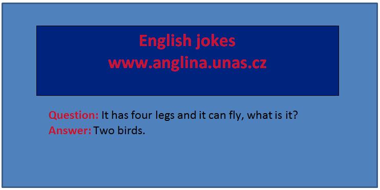 Angličtina online a zdarma - Anglická Nepravidelná slovesa - na www.Anglina.uNas.cz - english jokes zdarma - nepravidelná slovesa v angličtině